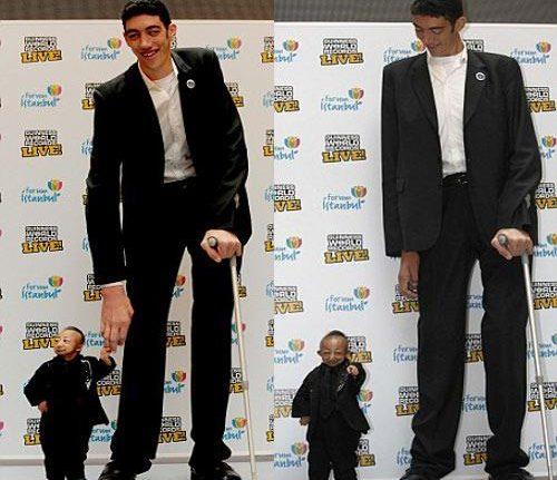 Sultan kosen l 39 homme le plus grand du monde et he pingping l 39 homme le plus petit istanbul - L homme le plus beau au monde ...